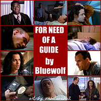 For Need of a Guide - Bluewolf and unbelievable2